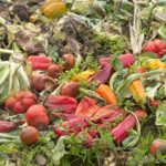Starting a compost pile will save money at home.